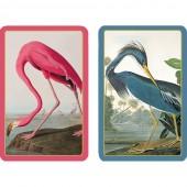 Caspari - Audubon