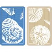 CASPARI- Shell