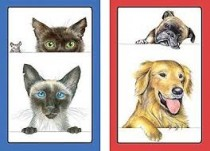 Caspari Playing Cards - Dogs and Cats